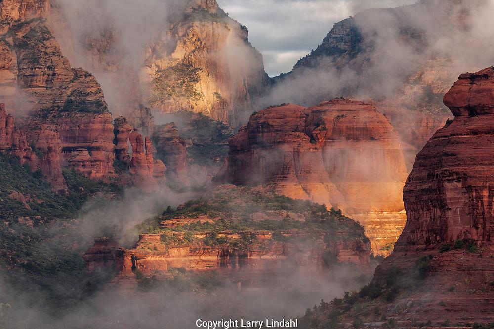 Boynton Canyon, mornign fog, Coconino National Forest, Sedona, Arizona,