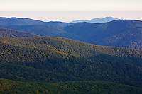 Morning view of the densely forested Biescczady mountains on the Polish side seen from the Polish-Slovakian border on the peak of Mount Durkovec (1189 m). Runina area, Slovakia / Poland.