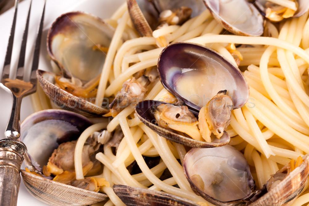 Closeup shot of a typical Italian recipe: spaghetti with clams.