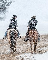 Two Cowboys, Snowstorm