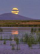 Rising Moon, Tule Lake National Wildlife Refuge, California