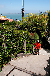 San Francisco: Filbert Street steps near Coit Tower.  Photo copyright Lee Foster. Photo # casanf104281