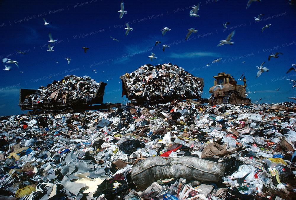 New Jersey Landfill in Staten Island.