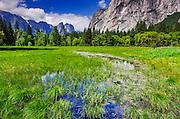 Spring run-off in meadow, Yosemite Valley, Yosemite National Park, California USA