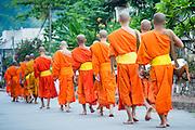 Monks after receiving alms in Luang Prabang