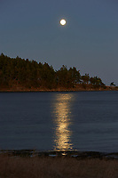 Full moon rising, Drumbeg Provincial Park Gabriola, British Columbia Canada, September 2008   Photo: Peter Llewellyn