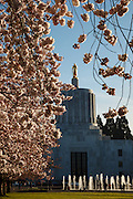 USA, Oregon, Salem, State Capitol State Park, State Capitol and cherry blossoms.