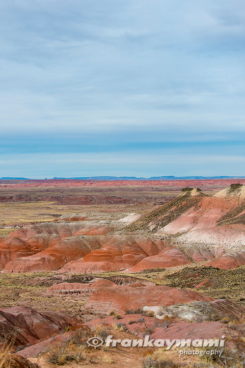 Color images of Petrified Forest National Park along Route 66 in Holbrook, AZ.
