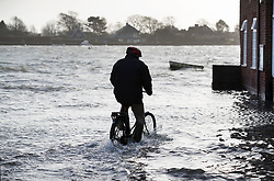 © Licensed to London News Pictures. 03/01/2018. Bosham, UK. A man cycles through tidal flood water with his dog at Bosham as storm Eleanor hits the south. Winds of up to 80 mph are being forecast today in parts of the UK. Photo credit: Peter Macdiarmid/LNP