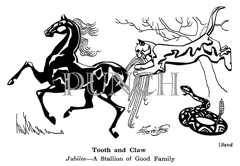Sand ; Jubilee the stallion