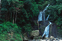 Waterfall in the rainforest of Sierra Madre National Park, Luzon, Phillipines..Sep 01.