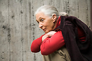 Jane Goodall photographed in Seattle, WA. 2006