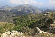 Carboniferous limestone karst scenery, near Benimaurell, Vall de Laguar, Marina Alta, Alicante province, Spain