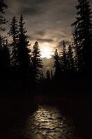 Moonlight on small stream, Montana.