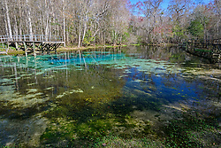 Quelltopf Blue Spring mit glasklarem Wasser, Swelling Pot Blue Spring with crystal clear water, High Springs, Gilchrist County, Florida, USA, United States