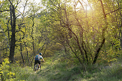 Rear view of mature man riding mountain bike through forest