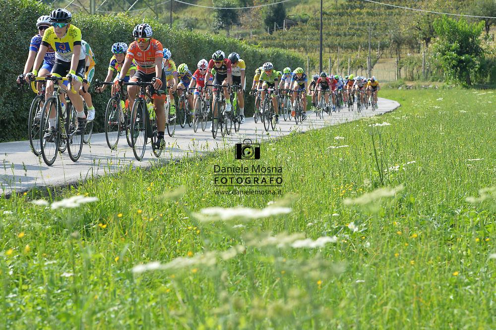 Ciclismo giovanile, 10A Coppa di Sera, Esordienti Primo Anno Maschile, Borgo Valsugana 10 settembre 2016 <br /> <br /> © foto Daniele Mosna