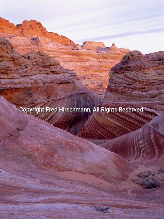 Cross-bedding in wind-eroded Navajo Sandstone, Vermilion Cliffs National Monument, Paria-Vermilion Cliffs Wilderness, Arizona.