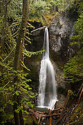 Marymere Falls, a 90-foot waterfall near Crescent Lake, in Olympic National Park, Washington, is accessible by a one-mile trail that weaves through mossy old growth forest.