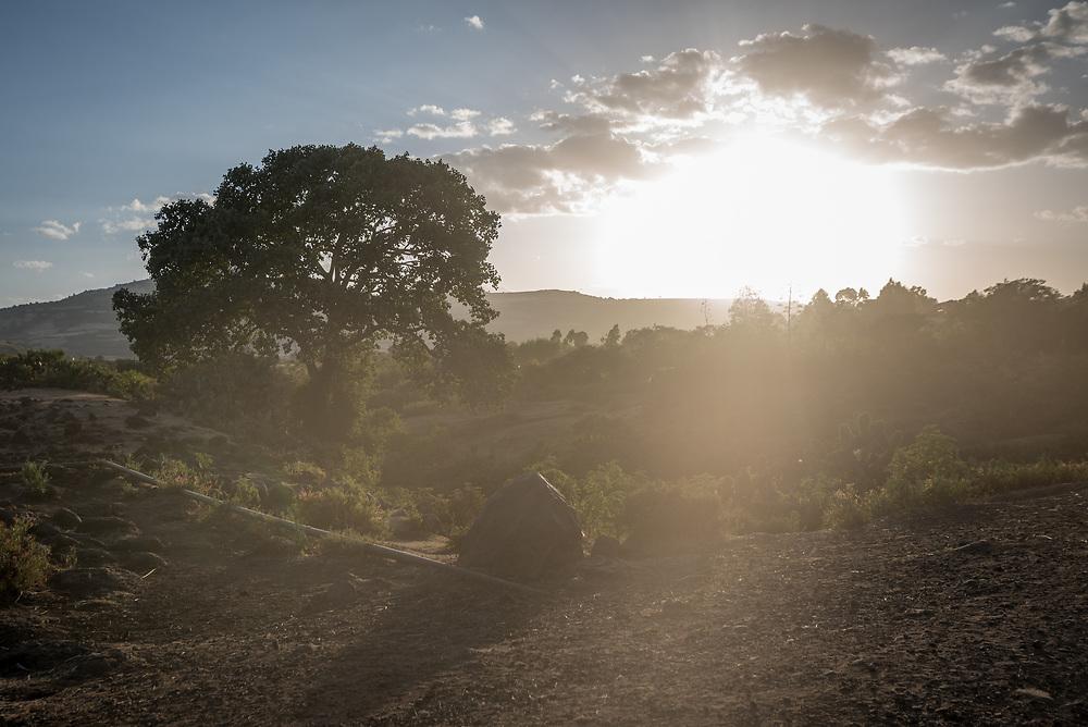 26 January 2019, Ethiopia: The sun sets near Goro, Bale Zone, Oromi, Ethiopia.