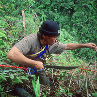 Dr. Peter Lerche hacks through upper Amazon cloud forest enroute to pre-Incan tomb.