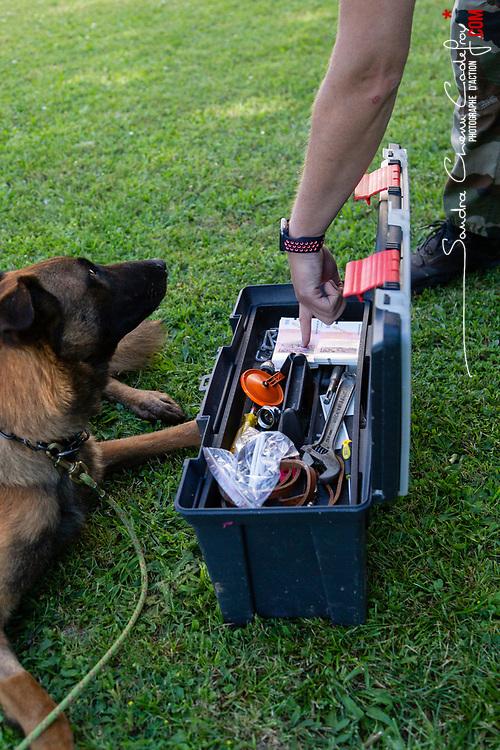 Équipe cynophile de gendarmerie composée de Sébastien, gendarme, et d' Oury son chien SAMBI de recherche de stupéfiants, armes, munitions et billets au PSIG GTA Orly.<br /> Juin 2021 / Orly (91) / FRANCE