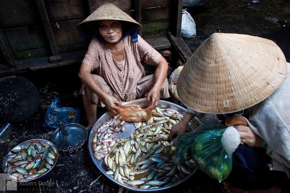 Two women haggle over the price of fish in a market in Chau Doc in the far West of the Mekong Delta near Cambodia. Robert Dodge, a Washington DC photographer and writer, has been working on his Vietnam 40 Years Later project since 2005. The project has taken him throughout Vietnam, including Hanoi, Ho Chi Minh City (Saigon), Nha Trang, Mue Nie, Phan Thiet, the Mekong, Sapa, Ninh Binh and the Perfume Pagoda. His images capture scenes and people from women in conical hats planting rice along the Red River in the north to men and women working in the floating markets on the Mekong River and its tributaries. Robert's project also captures the traditions of ancient Asia in the rural markets, Buddhist Monasteries and the celebrations around Tet, the Lunar New Year. Also to be found are images of the emerging modern Vietnam, such as young people eating and drinking and embracing the fashions and music of the West. His book. Vietnam 40 Years Later, was published March 2014 by Damiani Editore of Italy.