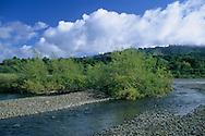 Navarro River at Hendy Woods State Park, near Philo, Mendocino County, California