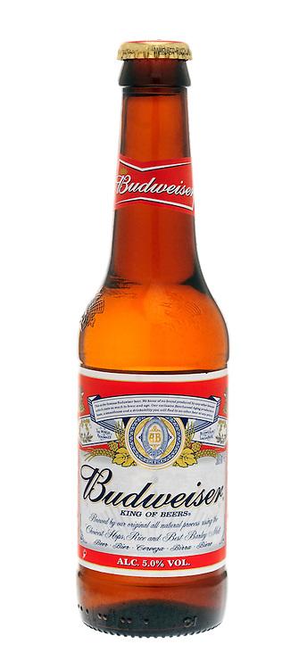 Bottle of Budweiser Lager