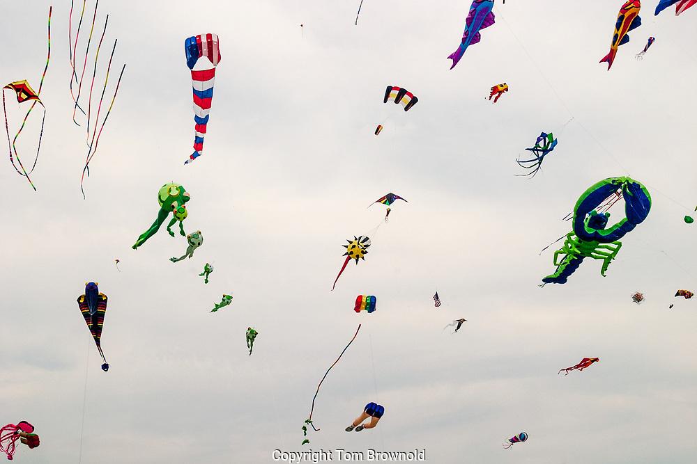 kites flying in Newport,RI