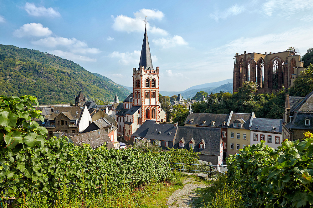 Romantic Rhine view of St. Peter's Protestant Church, Werner Chapel Ruins, and rolling hills, Bacharach, Germany.