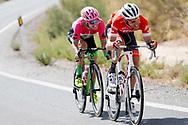 Bauke Mollema (NED - Trek - Segafredo), Simon Clarke (AUS - EF Education First - Drapac) during the UCI World Tour, Tour of Spain (Vuelta) 2018, Stage 5, Granada - Roquetas de Mar 188,7 km in Spain, on August 29th, 2018 - Photo Luis Angel Gomez / BettiniPhoto / ProSportsImages / DPPI