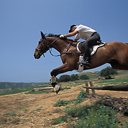 Hunt Master Raul Walters, of West Hills Hunt, a English style fox hunting club, practices his horsemanship.