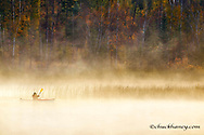 Kayaking on Beaver Lake in the rising steam in autumn at the Stillwater State Forest near Whitefish, Montana, USA  MR