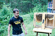 Beekeeper Erik Luznar with a display hive in the Draga Valley, near Radovljica, Slovenia © Rudolf Abraham