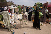 A local woman carries her purchases past a stallholder and his mule at the weekly market at Qurna, a village on the West Bank of Luxor, Egypt. Amidst the bustle of this busy regular event, people from many miles around have come to trade and buy their provisions.