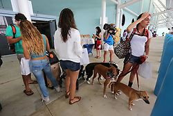 Veronica Fontanals from just outside of Puerto Rico arrived on Adventure of the Seas traveling with her family's three dogs, as well as her .sister, brother and niece. (Emily Michot/Miami Herald/TNS)