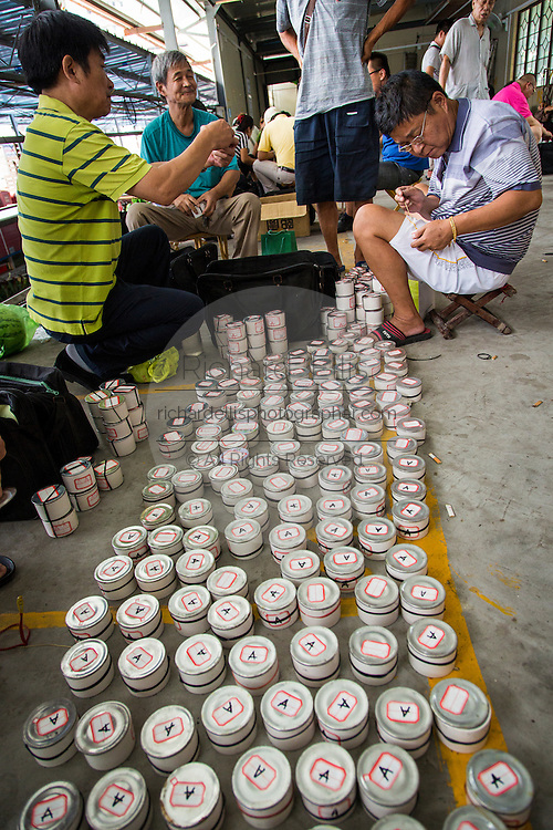Men inspect fighting crickets at the Bird & Insect Market in Shanghai, China