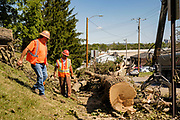 18 AUGUST 2020 - CEDAR RAPIDS, IOWA: A crew removes a tree downed in the derecho wind storm in a residential neighborhood of Cedar Rapids. Cedar Rapids was the state's hardest hit city by the derecho that roared across Iowa last week. City officials said the damage left by the derecho was more extensive than the 2008 flood that destroyed much of its downtown. City residents are reporting that almost every home was damaged in the storm, many businesses were closed, and up to half of the city's tree canopy was destroyed. A week after the storm, more than 40,000 homes were still without power. A spokesman for Alliant Energy said the utility has replaced as many power poles in one week that they normally replace in 8 months. On Monday, President Trump approved a $4 billion emergency declaration for Iowa to aid in derecho recovery.   PHOTO BY JACK KURTZ