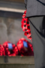 2017-11-12_Barnsley Remembrance Day