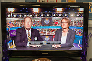 Wantagh, New York, USA. February 7, 2016. Sports commentators JOHN STERLING and MARY CARILLO give play-by-play commentary during Hallmark Channel Kitten Bowl III, viewed on a large flat-screen TV during Open House at Last Hope Animal Rescue, where the adoption center's guests cheer on their team, the Last Hope Lions. Over 100 adoptable kittens from Last Hope Inc and North Shore Animal League America participated in the taped games, and the Home and Family Felines won the 2016 championship, which first aired the day of Super Bowl 50.
