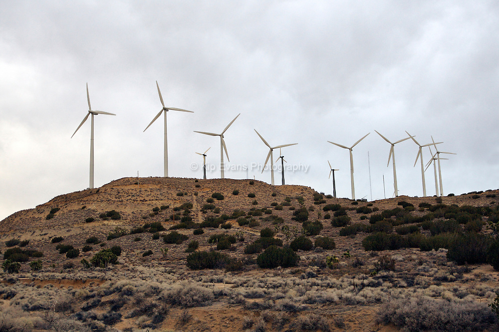 Wind Turbines, near Taff, California