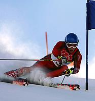 Photo: Catrine Gapper.<br />Winter Olympics, Turin 2006. Alpine Skiing. 20/02/2006.<br />Benjamin Raich of Austria wins Gold Medal in the Men's Giant Slalom.