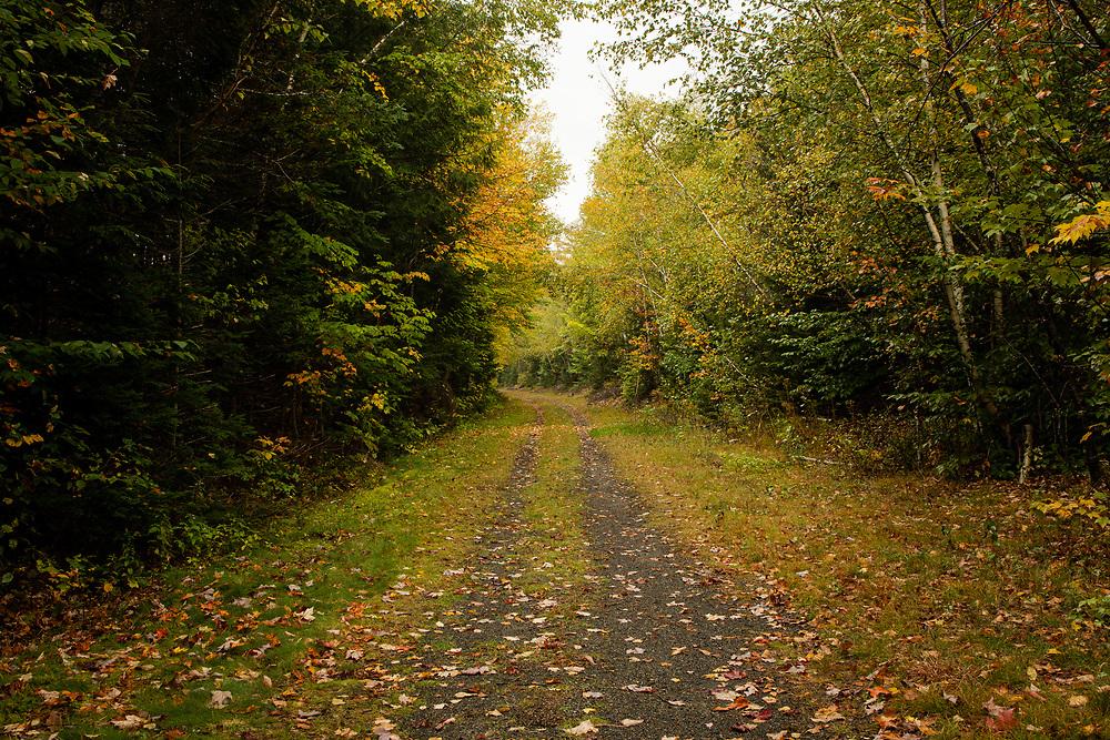 Autumn trip to New Hampshire's White Mountains.