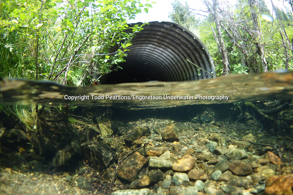 Culvert<br /> <br /> Todd Pearsons/Engbretson Underwater Photography