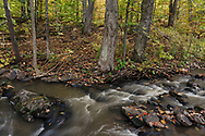 Fortune creek (far upstream of Dunlop Falls). Photographed during Fall Rhapsody at Gatineau Park in Gatineau, Québec, Canada.