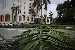 October 7, 2016 - Florida, U.S. - Some branches are in the street in Lake Worth near the historic Gulfstream Hotel Friday, October 7, 2016. (Credit Image: © Bruce R. Bennett/The Palm Beach Post via ZUMA Wire)