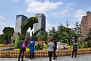 Mar 25, 2016 - Shanghai, Shanghai, China - A set of creative greenery landscape beautify the street of the Bund brought a comfortable tourism atmosphere for the tourists in Shanghai,China on 25th March 2016. (Credit Image: © Exclusivepix Media)