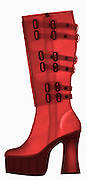 X-ray of tall leather boots.