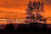 Willamette Valley, Oregon,Sunrise